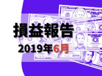 損益報告2019年6月