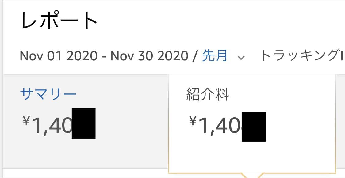 損益報告2020年11月